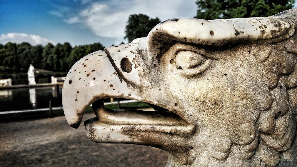 Der Brandenburger Adler Foto: Pixabay/gemeinfrei