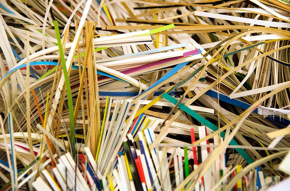 EU-Regionalprojekt in Großderschau: Aus zellulosehaltigen Gräsern werden Kartons. Foto: Pixabay/gemeinfrei