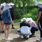 Mit Imkerschleier ausgerüstet erhalten Schüler*innen einen Einblick in das Bienenleben