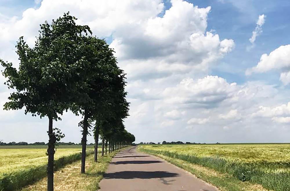Die Prignitz hat mehr zu bieten als schöne Landschaften. Foto: gemeinfrei/Pixabay
